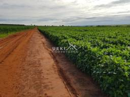 Área rural a venda Lavoura 1416 Ha - MS