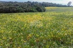 Chácara à venda em Zona rural, Fazenda rio grande cod:923762