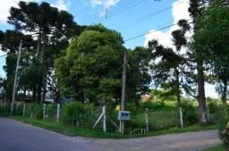 Terreno à venda, 5100 m² por R$ 2.000.000,00 - São Lucas - Canela/RS