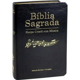 Bíblia Sagrada com Letras Grande