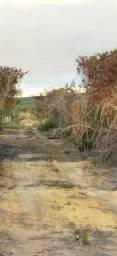Vende-se duas tarefas de terra na entrada do riacho fundo a 500 metros da BA 052