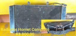 Radiador Hornet Completo