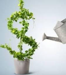 Investidor para rentabilidade a partir de 100%