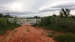 Fazenda 404 Ha - Marcelândia - MT - Agropecuária