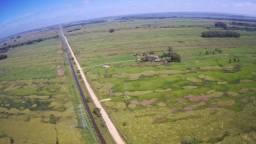 Alugo Fazenda para Plantação de SOJA / MILHo- Rio grande - RS