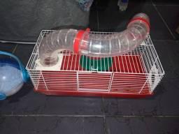 Gaiola pra hamster e trasporte de hasmter tudo 50$