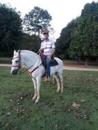 cavalo pra tudo , pra criança , pra lida, $5.000