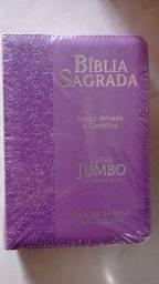 Vendo bíblia com harpa e corinhos letra jumbo hiper gigante