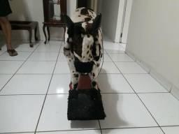 Vende-se cavalinho e touro infantil