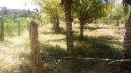 Terreno ilha de Vera cruz / bairro tairu