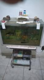 Vendo aquário com suporte de mesa e com uma bomba grande