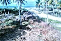 Paraíso na praia