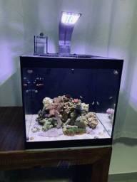 Nano  Reef 36 litros Completo