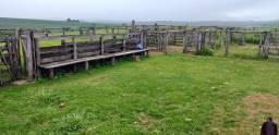 Fazenda Paracatu Minas Gerais