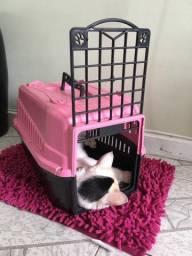 Vendo Caixa de Transporte para Pet