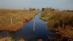 Vende-se Fazenda de 251 ha, localizada no Município de Naviraí (aceita proposta)