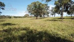 Sítio à venda, 20000 m² por R$ 150.000,00 - Uberlândia / Monte Alegre de Minas - Monte Ale