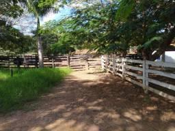 Fazenda de 267 ha - 45 km de Unaí - região do Boqueirão - aceito imóveis e veículos