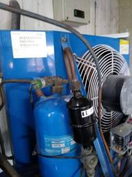 Motor de frigorífica