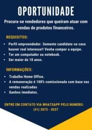 CONSULTOR DE VENDAS INTERNAS