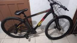 Bike RAVA 29 ARO