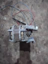 Motor de tanquinho 220v