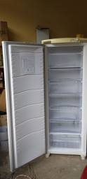 Freezer 300