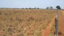 Fazenda 125 Alqueires em formoso do Araguaia