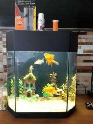 Vendo aquário de 20Litros com bomba, completo