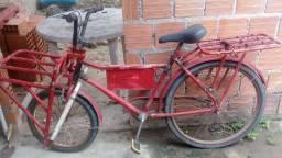 Bicicleta cargueira vim buscar no Santos Dumont 100 reais