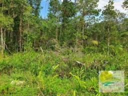Terreno à venda, 420 m² por R$ 70.000 Itamar - Itapoá/SC TE0703