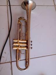 Trompete veril