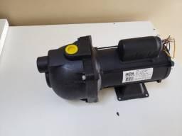 Bomba Pratika AP 3c 1/2cv bivolt Dancor