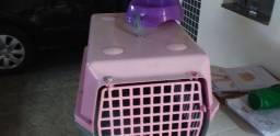 Caixa de transporte de cães  pequeno com prato de ração