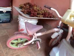 2 bicicletas e 1 carrinho 100 reais
