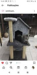 Casa com arranhador para gatos