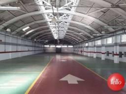 Terreno para alugar com 1 dormitórios em Mooca, São paulo cod:36662