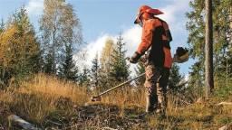 Limpeza e Roçada de Terrenos em Geral