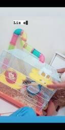 Vendo gaiola de Hamester