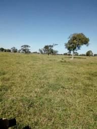 400 hectares Ótima para Lavoura