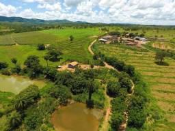 20.000 m² em Jequitibá plano, cercado e com porteira. Financiamento próprio em 150x