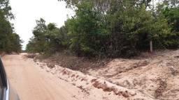 10 x 350 terreno com igarapé em Belterra próximo de pindobal