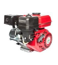 Motor estacionário 6,5 HP