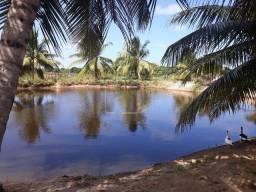 Vendo Sítio em Piaçabuçu - Alagoas