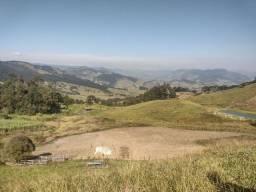 Raridade de Sítio em Delfim Moreira - Sul de Minas Gerais.