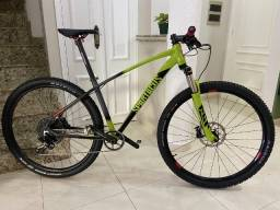 Bicicleta Aro 29 Tamanho 17 - Quadro TSW com Pintura personalizada