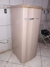 Vendo geladeira Electrolux de uma tampa mt nova unico dono completa por dentro