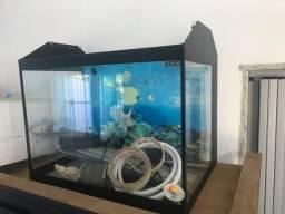 Aquário de vidro 26l