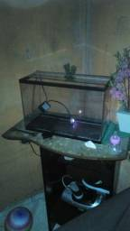 Vendo aquario 20 litros 100 reais