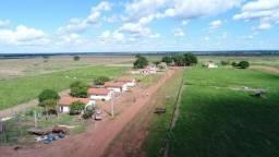 Uma Fazenda de verdade!!! 160 Milhões com pista de avião de 1100 e 7 Casas+SEDE